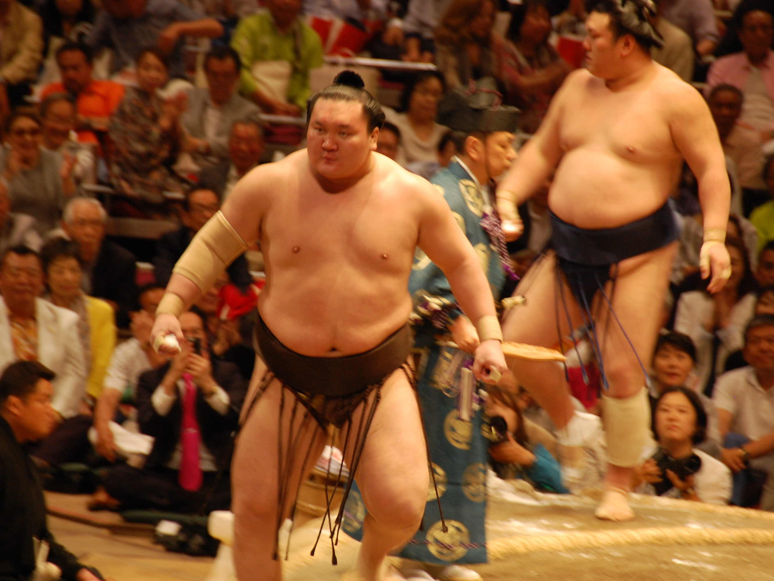 マス席で大相撲を観マスた!(初)